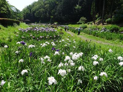 岐阜県百年公園3