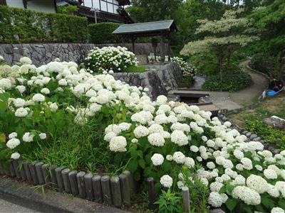 木曽三川公園10