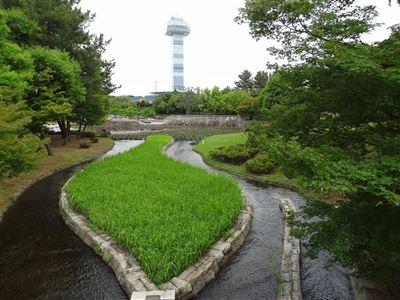 木曽三川公園11