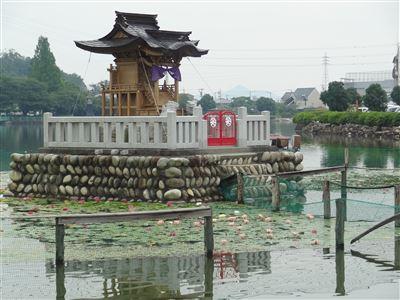 おがせ池1