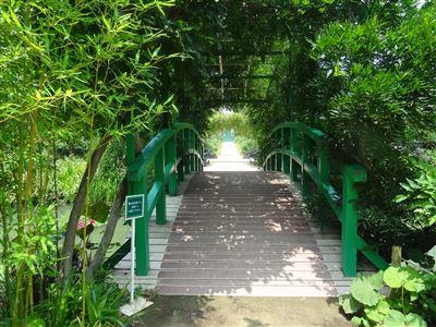 浜名湖ガーデンパーク7