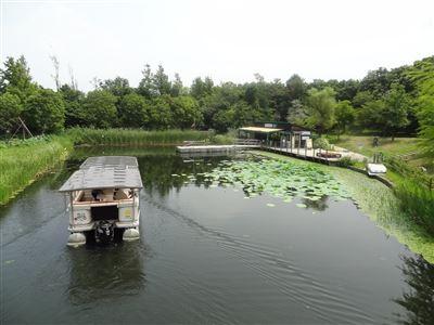 浜名湖ガーデンパーク3
