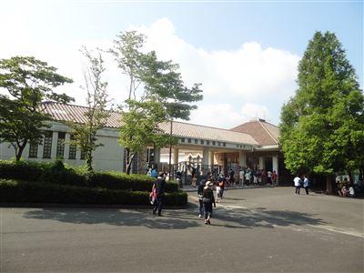 豊橋動物園11