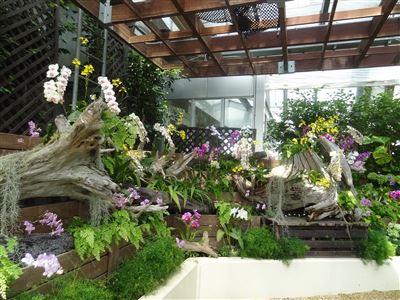 豊橋植物園14