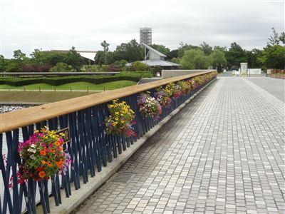 浜名湖ガーデンパーク2
