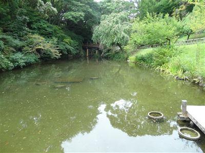 浜松城公園10
