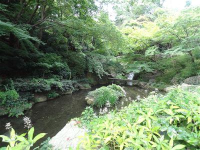 浜松城公園11