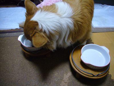 4日ちらし寿司11