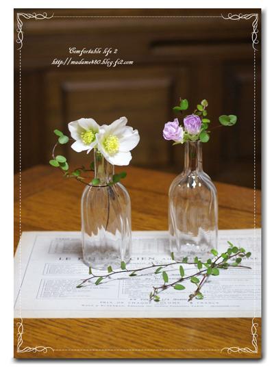 ニゲル&バラ咲きジュリアンweb用A