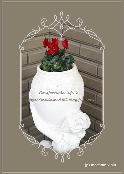 ガーデンシクラメンweb用C