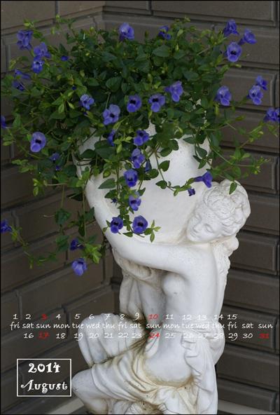 トレニアweb用カレンダー8月