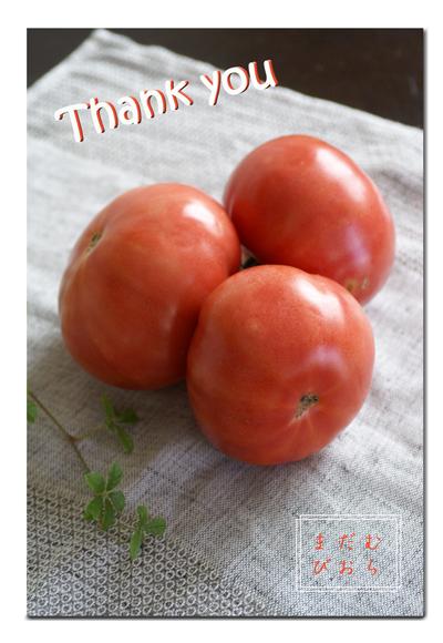 お礼状web用トマト