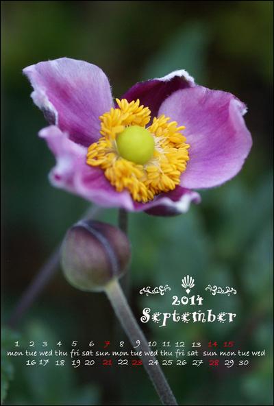 カレンダーKG9月web用