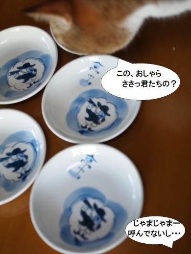 ささっちゃん部長&有田焼の小皿