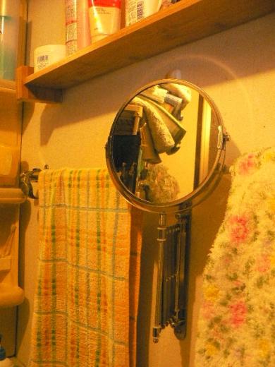 歯磨き用の可動する鏡