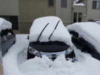 【子供と遊ぶ】 せっかくの大雪だから子供達と「かまくら作り」を楽しんだ♪