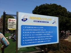 【子供と遊ぶ】 小金井公園ソリゲレンデで子供のバランス力を鍛える♪