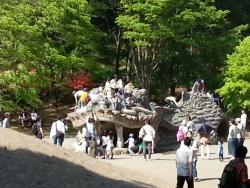 昭和記念公園 ドラゴンの砂山