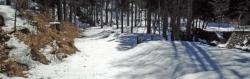 【必見キャンプ生活】 山梨県の「ビッグホーンオートキャンプ場」のアスレチック(木登り/ブランコ)+ビンゴ企画に大満足♪