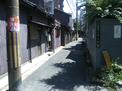 DSC_7407.jpg