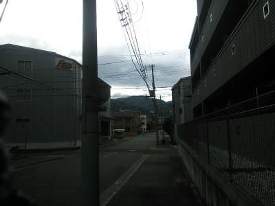 DSC_7485.jpg