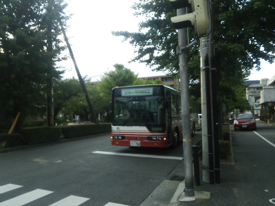 DSC_7493.jpg