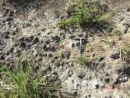 14 5 17長岡凝灰岩上部層と下の安山岩等の角礫