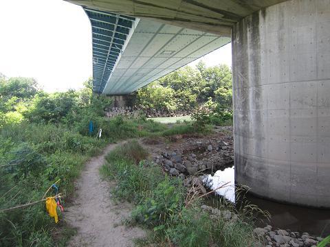 IMG_2808 ⑫平成大橋の下も