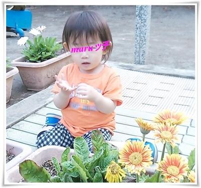 NCM_3696.jpg