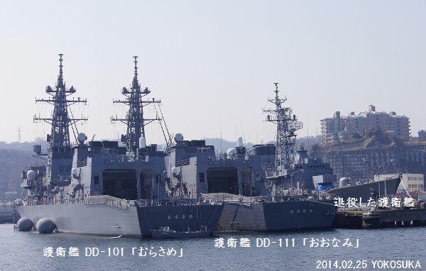 DSC02521 (600x382)