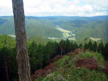 oshiyama