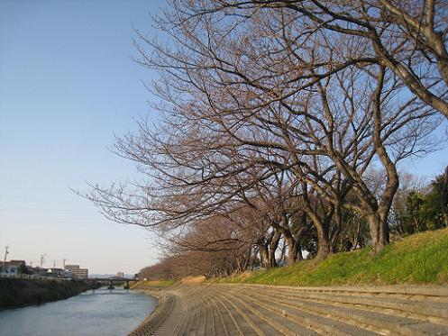 2014-03-23-1.jpg