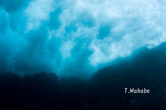伊豆海洋公園岸に当たる波