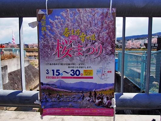 ashigara-20140321-08s.jpg