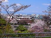 funkoshi-20140404-01s.jpg