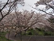 funkoshi-20140404-06s.jpg
