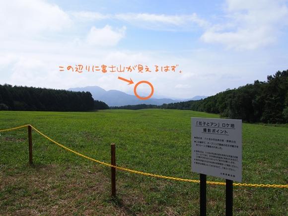 hanako-20140813-07s.jpg