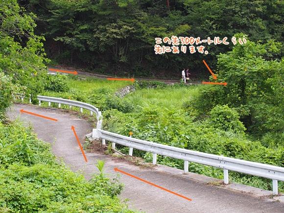 hanako-20140813-14s.jpg