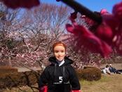 iwamotoyama-20140308-05s.jpg