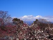 iwamotoyama-20140308-15s.jpg