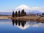 iwamotoyama-20140308-22s.jpg