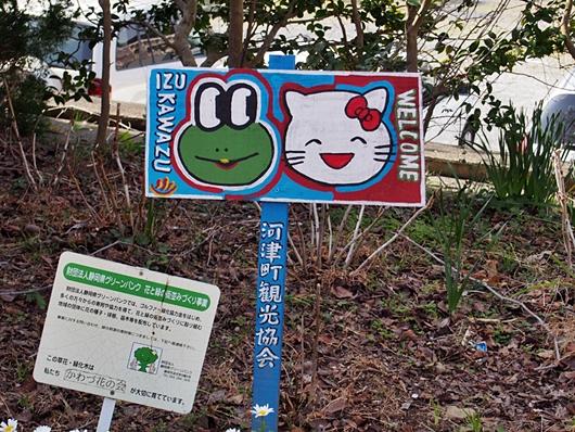 kawazu-20140226-11s.jpg