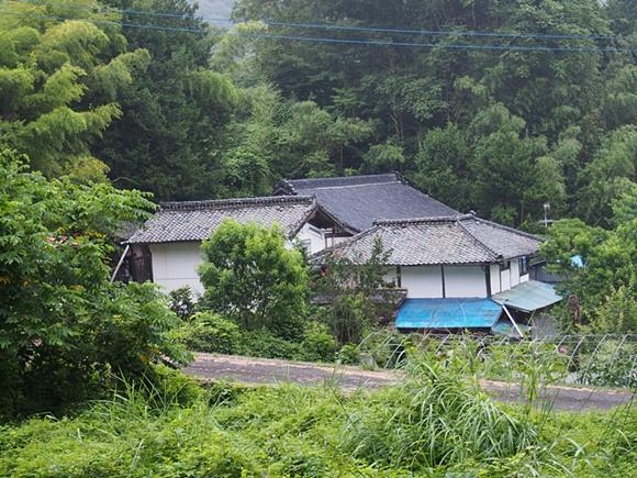 kinndaichi-20140814-06s.jpg