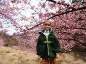 matukawa-20140315-03s.jpg