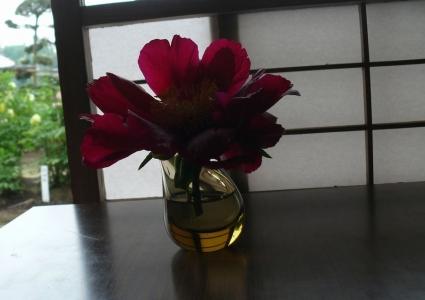 テーブルに飾られた牡丹