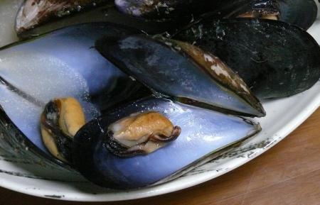 縮みすぎたムール貝