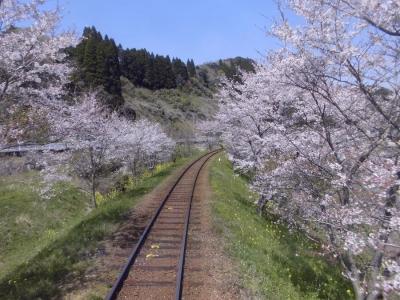 いすみ鉄道車中からの景色