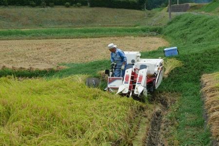 機械が田んぼに入ります