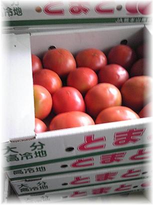 88トマト