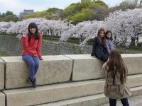 BL140405大阪城公園3P1100027